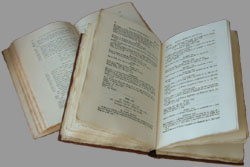Parish Record Transcripts in a Book